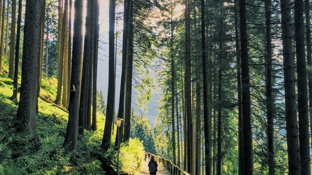 Wanderei Gastein