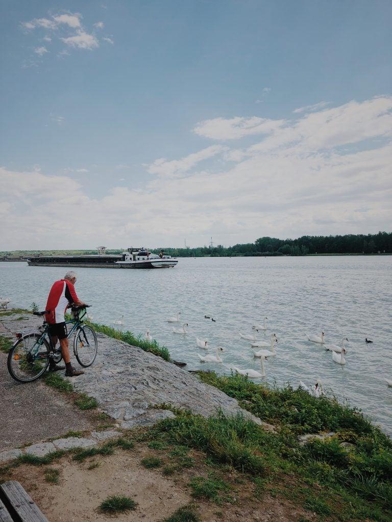 Fahrrad Donau