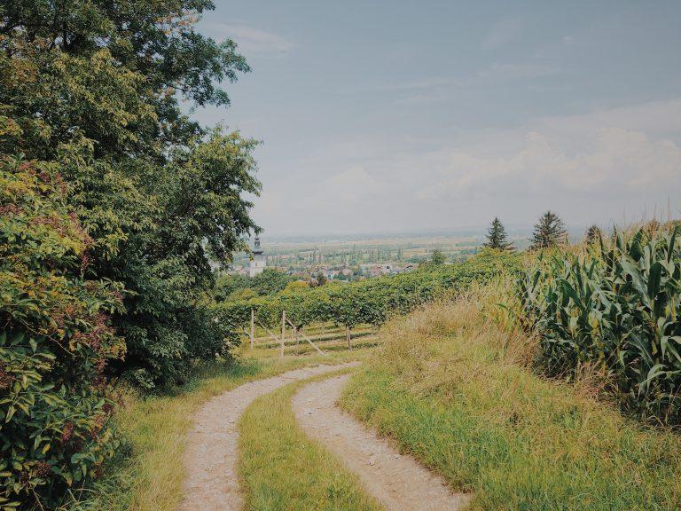 Tullnerfeld Wanderei